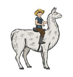 child ride on llama color engraving vector image