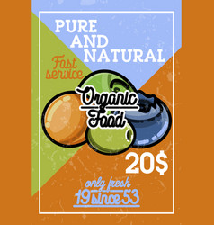 Color vintage organic food banner vector