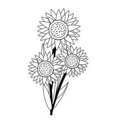 Floral sunflower cartoon vector