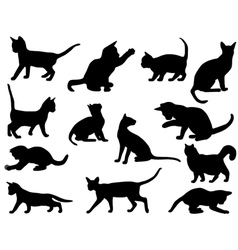 Silhouettes of cats vector