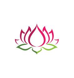 beauty lotus flowers design logo template vector image vector image