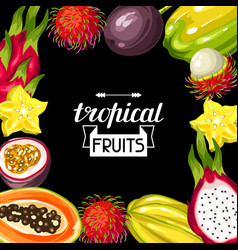 Frame with exotic tropical fruits of vector
