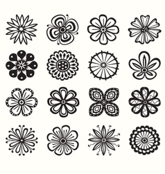 collection of flowers vector image