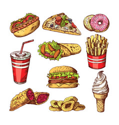 Fast food pictures burgers cola sandwich hotdog vector