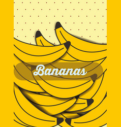 fruit banana on the dotted background vector image