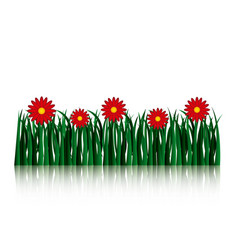 Garden flowers and grass field vector