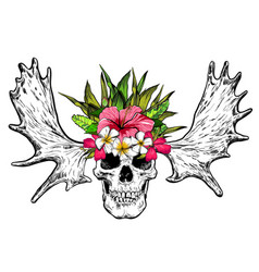 hand drawn skull with deer horns and flowers vector image