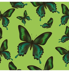Seamless pattern with green butterfly vector image