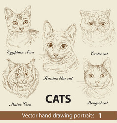 Set hand drawing cats 1 vector