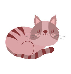 sleeping cute brown cat pet cartoon isolated white vector image