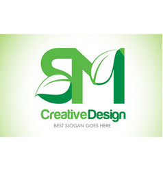 Sm green leaf letter design logo eco bio leaf vector