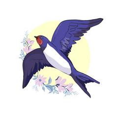 swallow isolated bird bird flying bird vector image