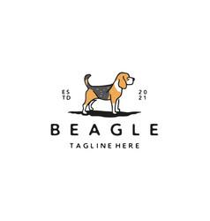 vintage hand drawn beagle dog logo design vector image