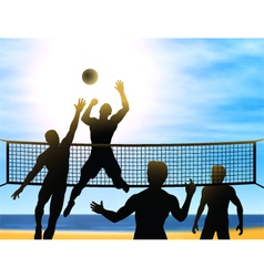 summer volleyball vector image