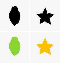 averrhoa carambola and starfruit vector image