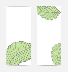 banners with large tropical green natural leaves vector image