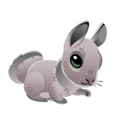cute rabbit isolated on white background of vector image