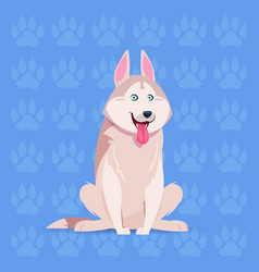Dog husky happy cartoon sitting over footprints vector