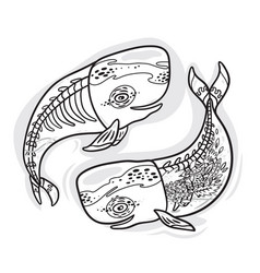 floral anatomy whales in outline vector image