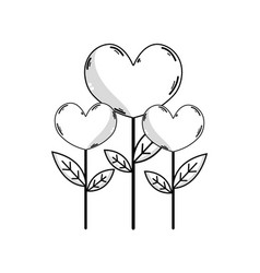 Line beauty heart plants with leaves design vector
