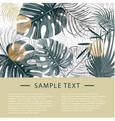 Tropical plants design template vector