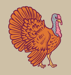 Turkey cock icon hand drawn style vector