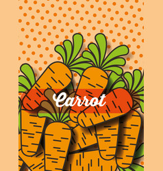 vegetable carrot on the dotted background vector image