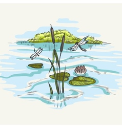 Natural Background Of Green Reeds vector image
