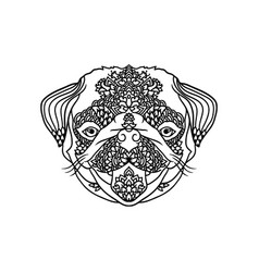 black and wite pug with ethnic floral ornaments vector image