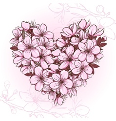 Cherry blossom in the shape of heart vector image