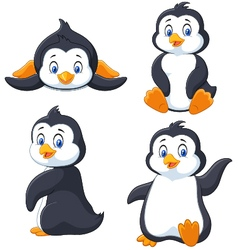 Collection of cartoon penguin isolated on white ba vector image