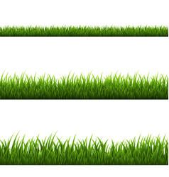 Grass border vector