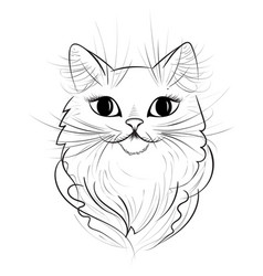 hand drawn cat vector image vector image