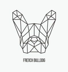 polygonal head french bulldog vector image