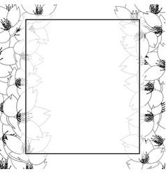 sakura cherry blossom outline banner card border vector image
