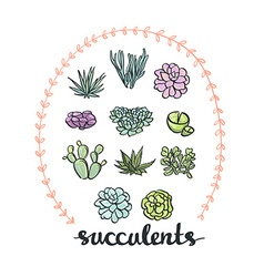 Succulent set cute Plants vector