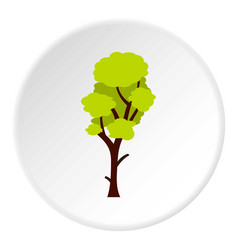 tall green tree icon circle vector image