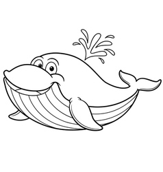 Whale outline vector image