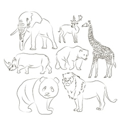 Wild animals set vector