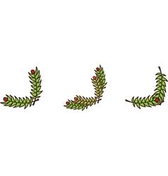 Christmas branch corner vector image vector image