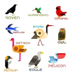 Colorful cartoon birds icons in flat style vector image
