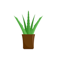 aloe plant icon flat style vector image