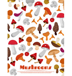 Delicacies fresh edible mushrooms poster vector