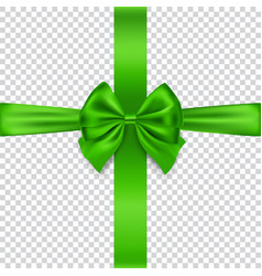 green bow and ribbon isolated on transparent vector image