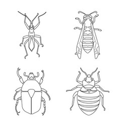 insect and fly symbol set vector image