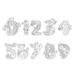 numbers coloring book for adults vector image