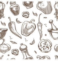 Pepper spices or seasoning sketch pattern vector
