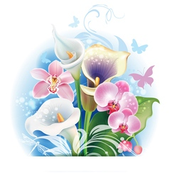 Bouquet of Orchid and Calla flowers vector image