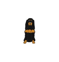 gordon setter cartoon dog icon vector image vector image
