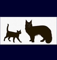 silhouettes of Maine Coon cats and the Abyssinian vector image vector image